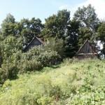 """Мои деревенские """"джунгли""""- родительский дом"""